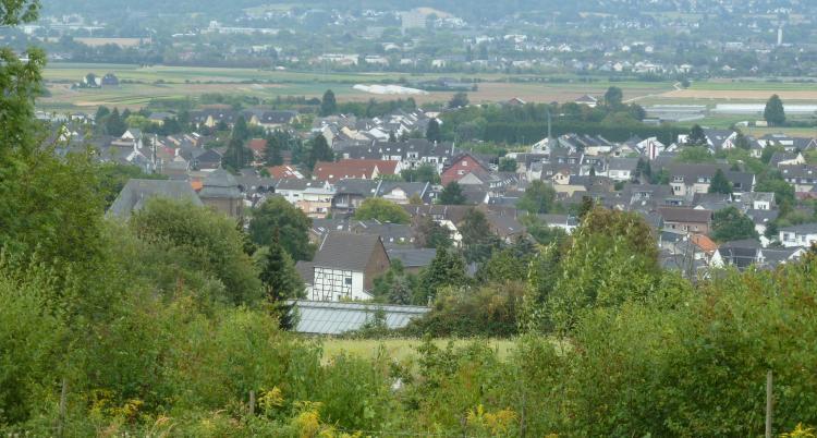 FDP-Alfter